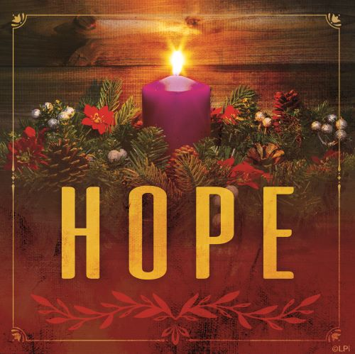 Advent Reflection 12/1/19