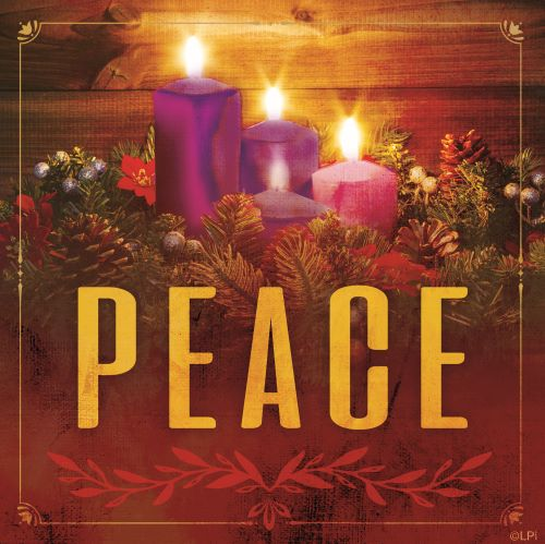 Advent Reflection 12/8/19
